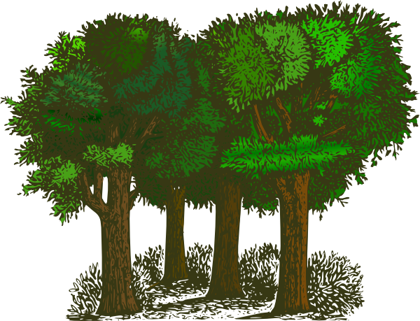clip library library Jungle trees clipart. Clip art at clker