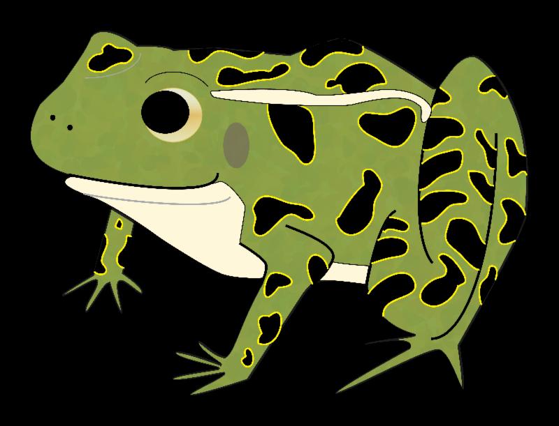 jpg free Green Frog Clipart leopard frog