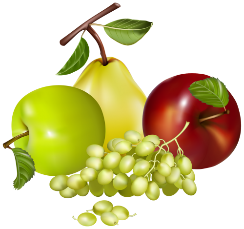 vector freeuse download Grapes clipart autumn fruit. Mixed fruits png gy