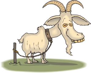 svg free Goat clipart family. Old clip art at