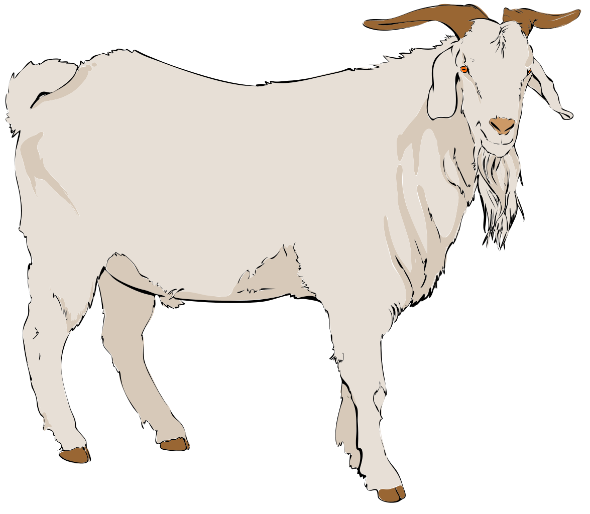 graphic transparent stock File svg wikimedia commons. Goat clipart family