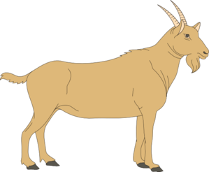 vector transparent Goat clipart grey object. Brown clip art at