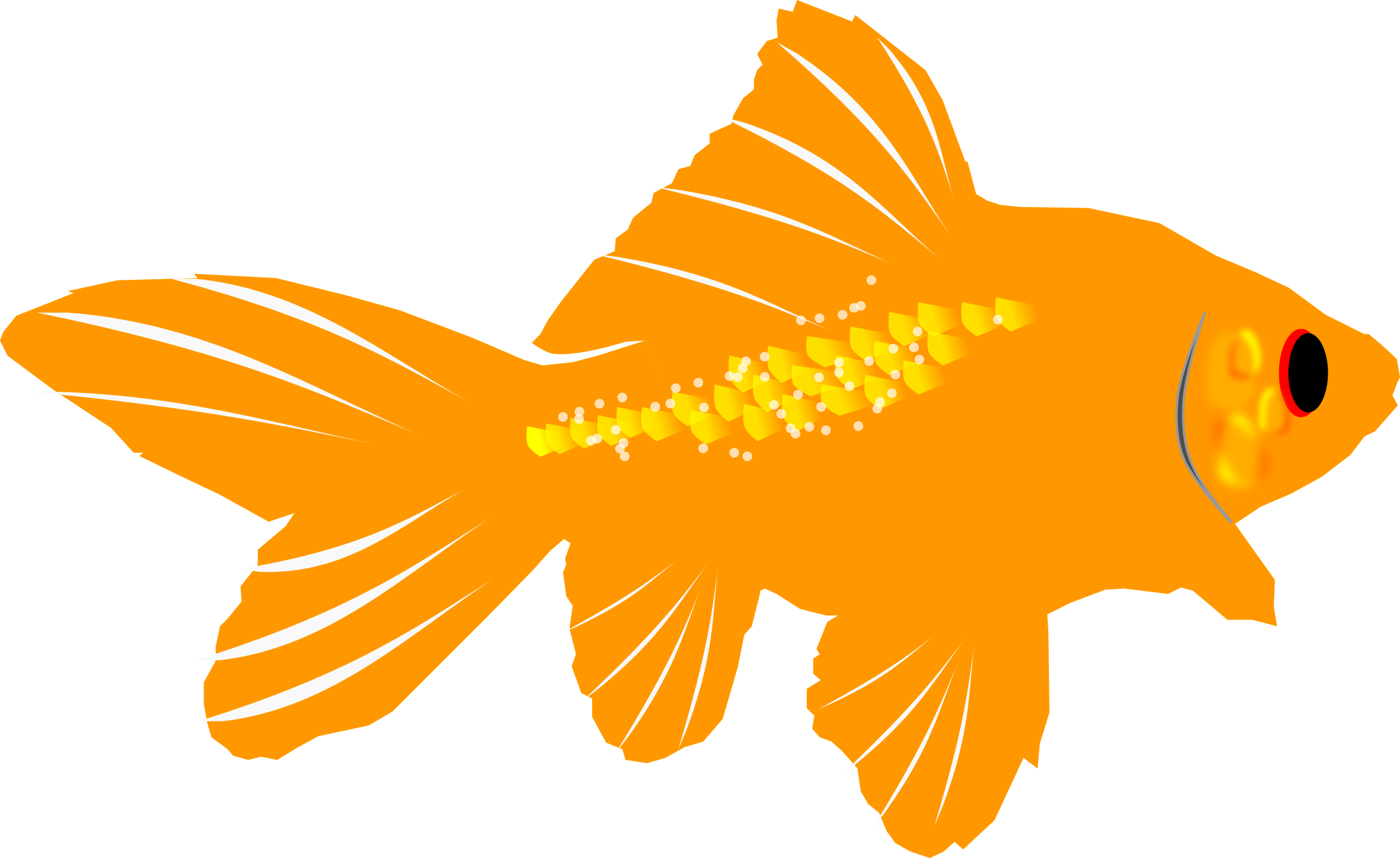 graphic freeuse . Clipart goldfish