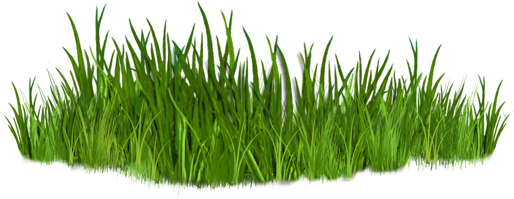 picture royalty free Ground clipart grass patch. Clip art images of