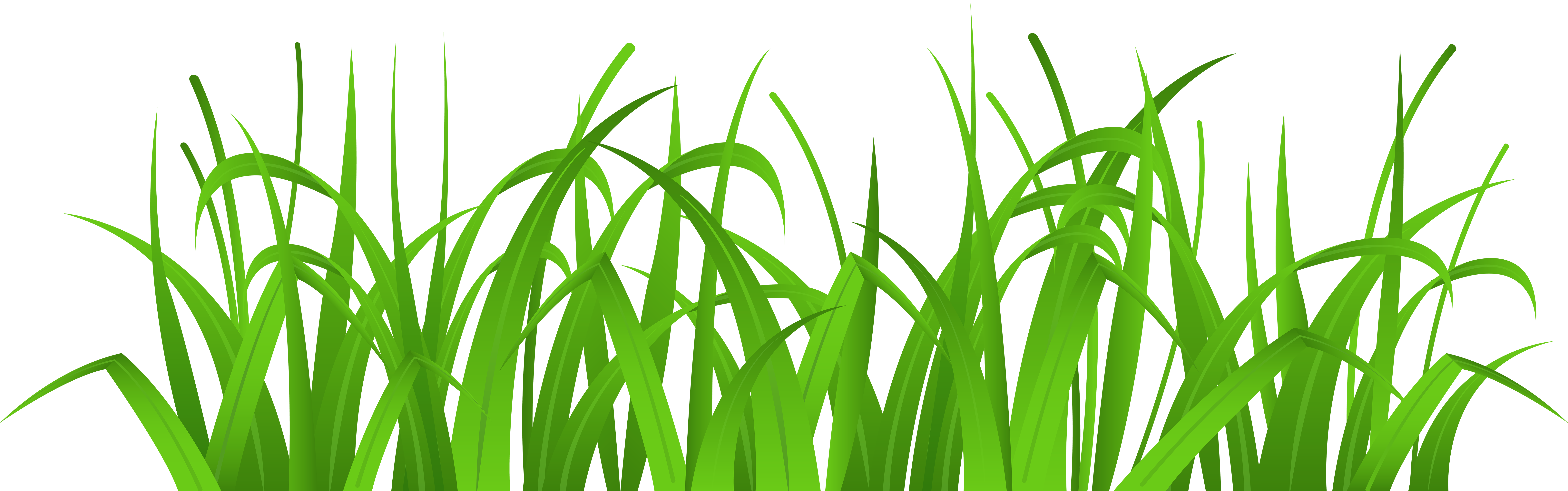 graphic freeuse download Cover png clip art. Grass clipart