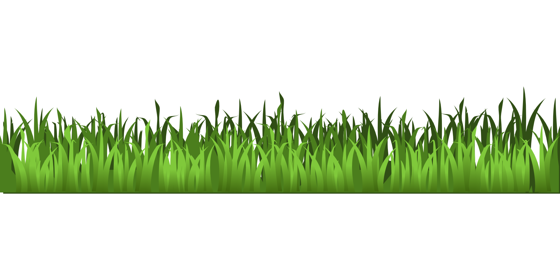 jpg freeuse library Meadow green grass isolated. Yard clipart transparent.