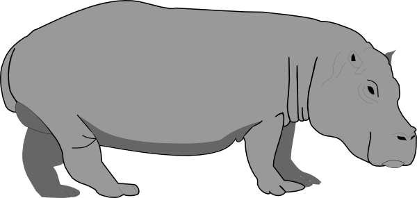 vector transparent Hippopotamus