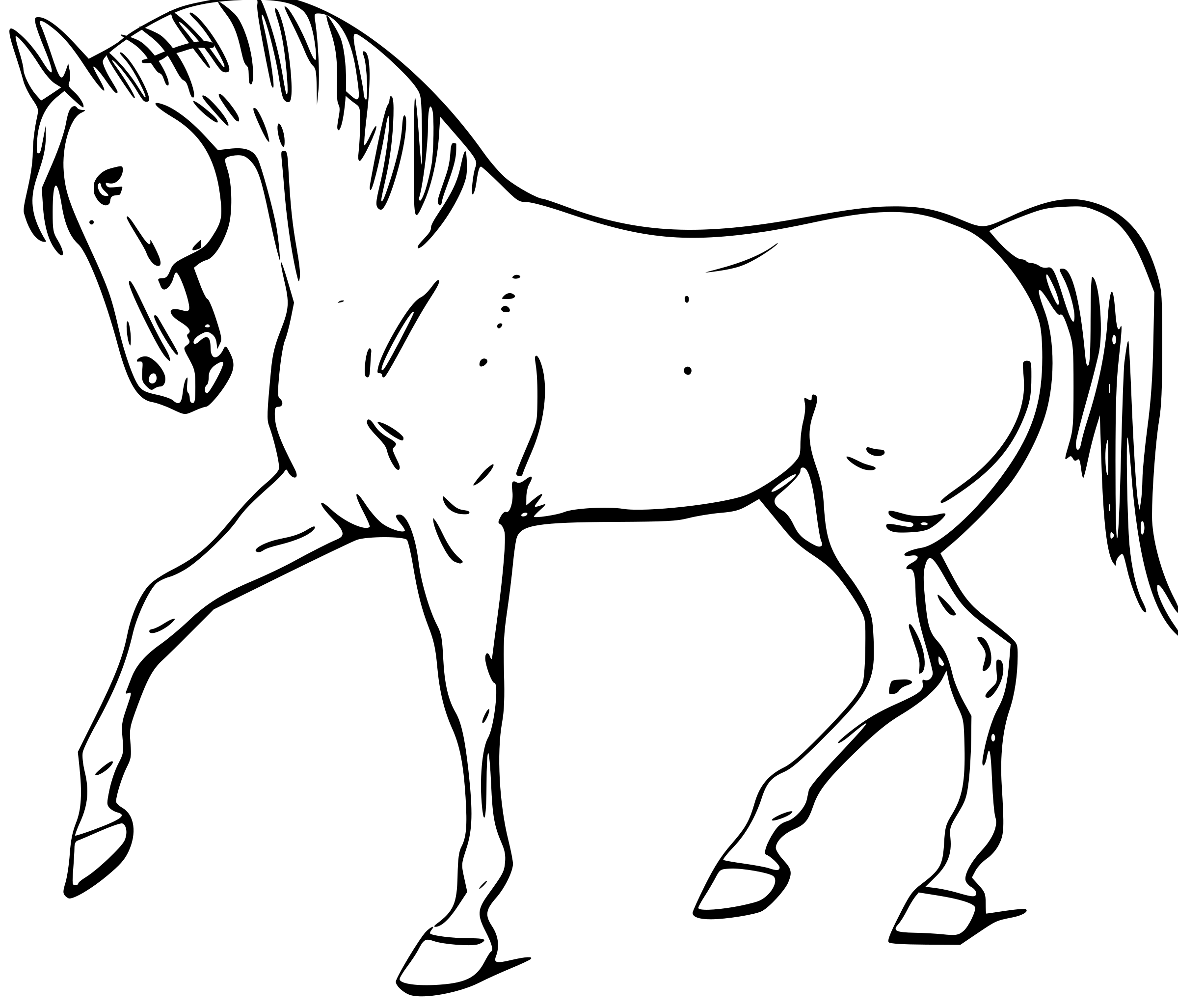 picture transparent stock Realistic clipart horse. Of typegoodies me drawing