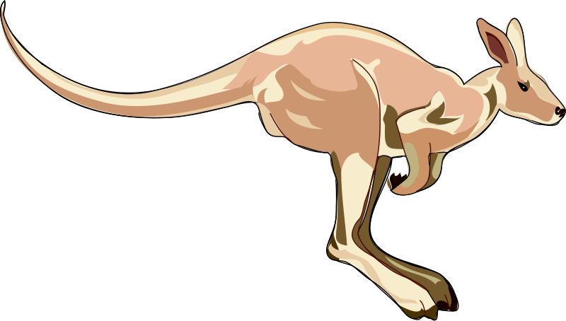 jpg library library Clipart kangaroo. Clip art royalty free