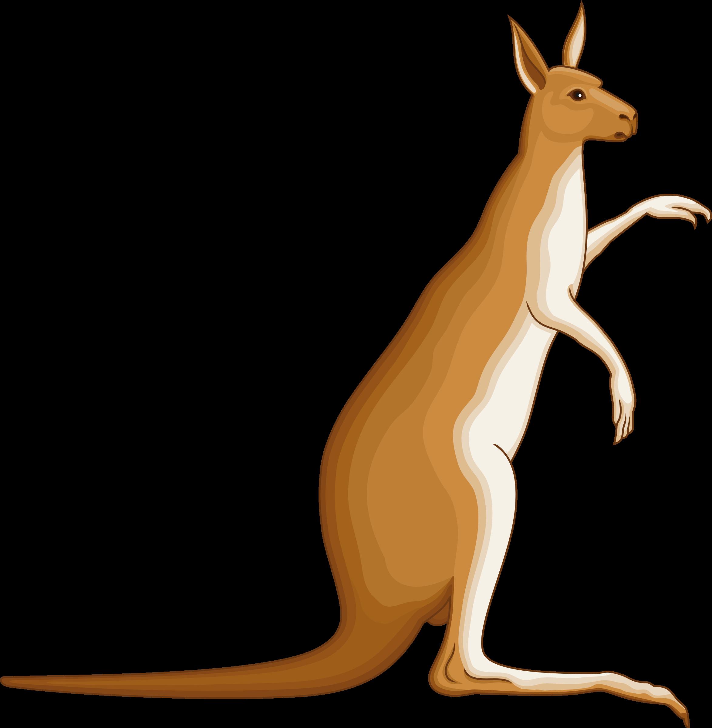clip transparent library Clipart kangaroo. Big image png.