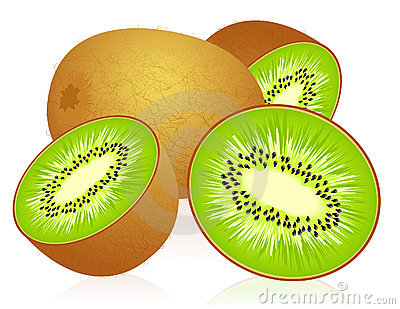 svg royalty free Clipart kiwi.  clipartlook