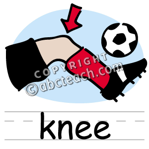 freeuse stock Clip art basic words. Clipart knee