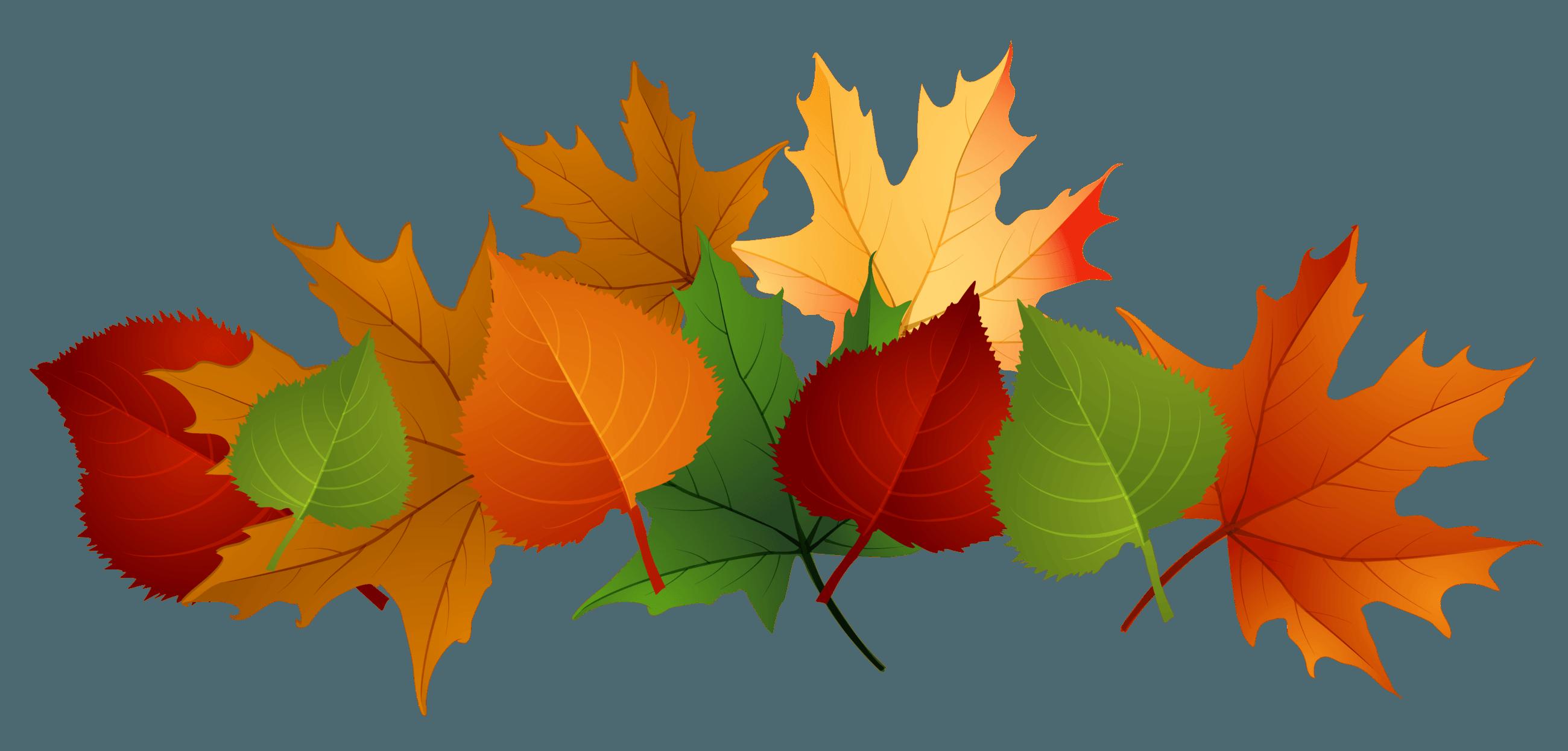 clip art Maple Leaf Clipart fallclip