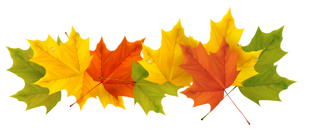 jpg transparent Autumn Leaves Clipart september