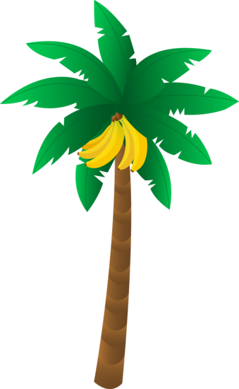 picture library stock Tropical Banana Tree