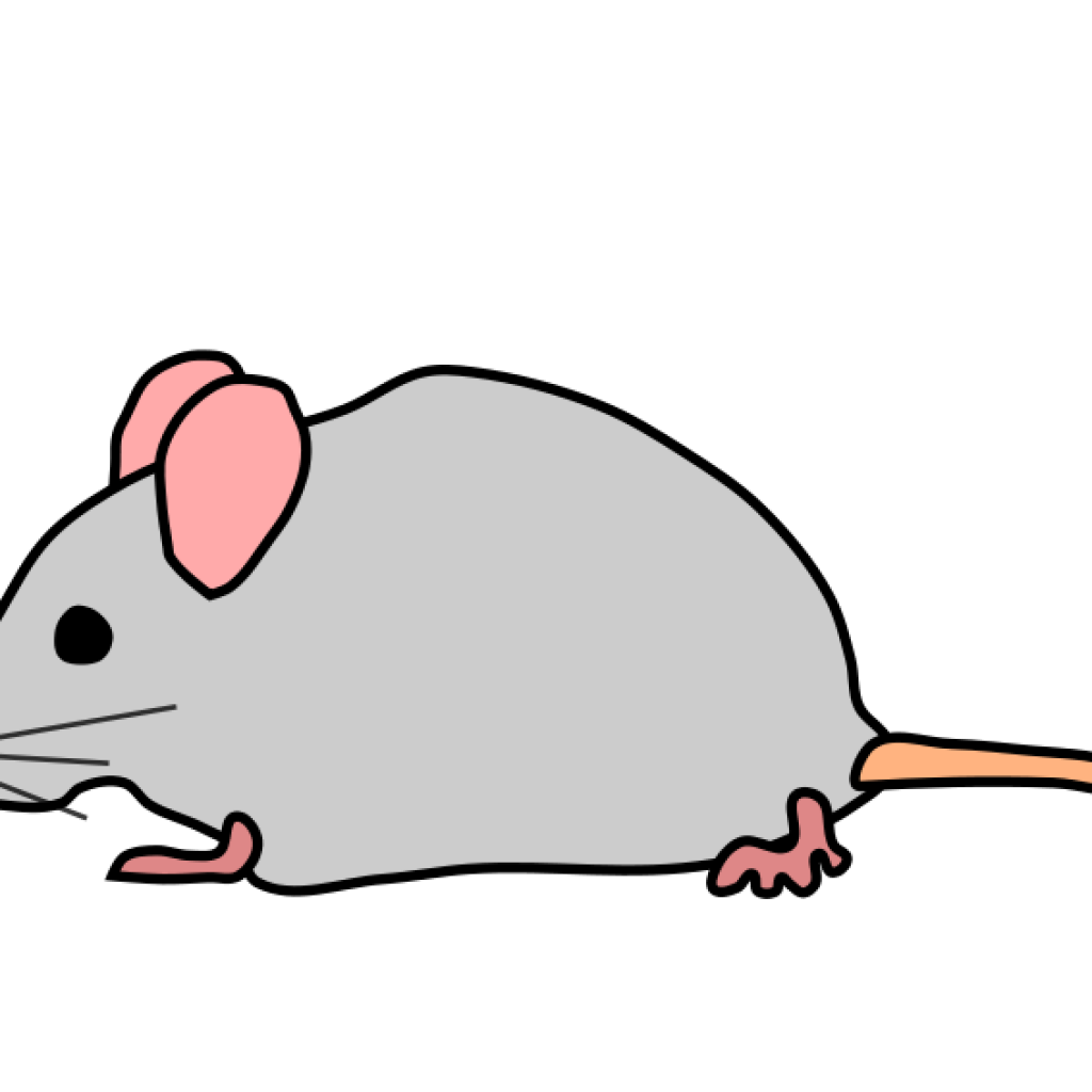 svg transparent Mouse clipart. Cute free on dumielauxepices