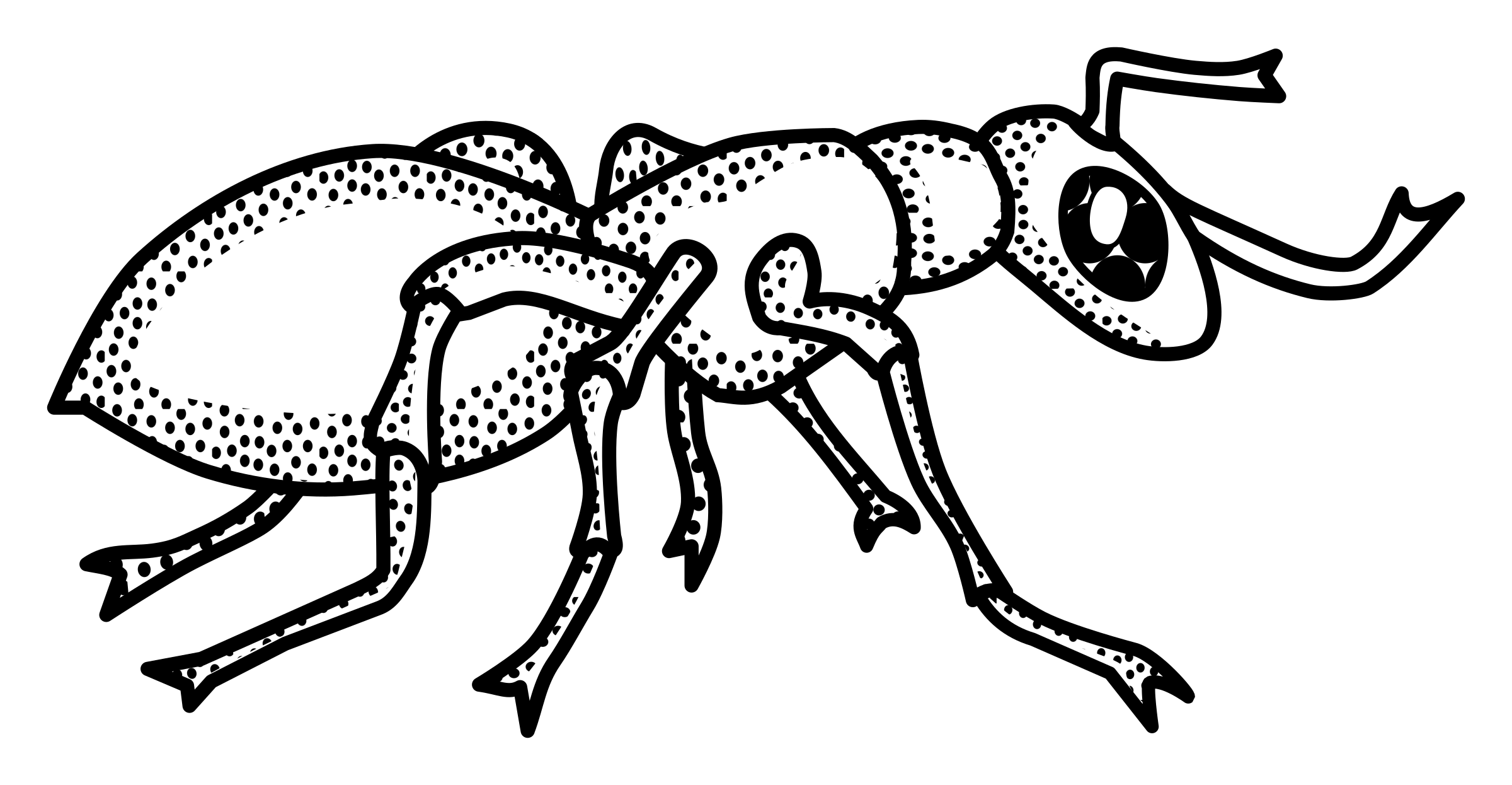 jpg free library Clipart of ants. Ant trail free png