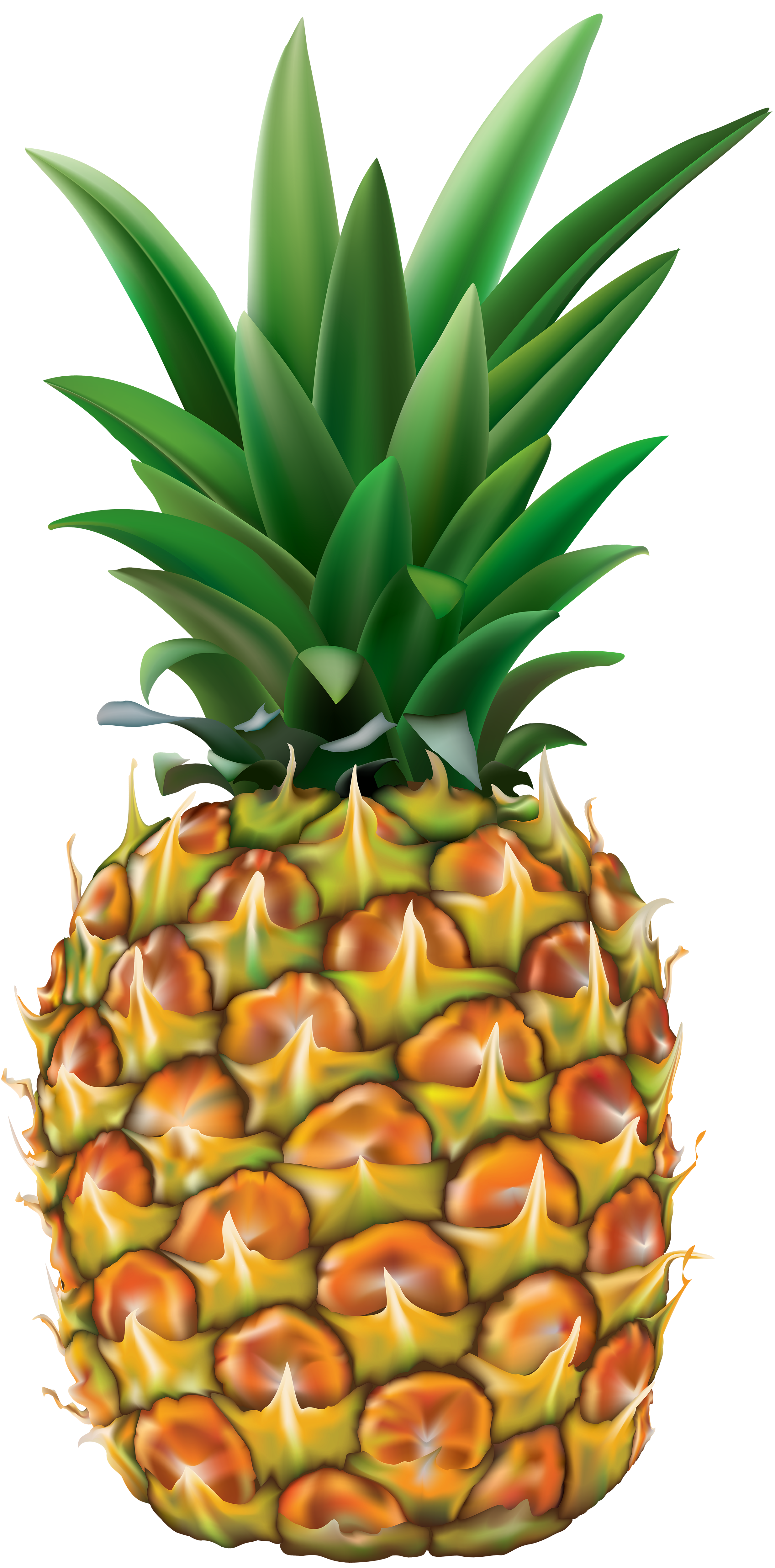 jpg library download Beach transparent pineapple. Png clip art image