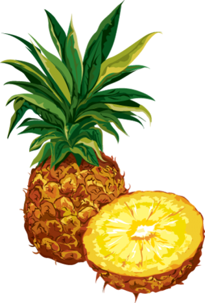 picture library Winter free on dumielauxepices. Pineapple clipart