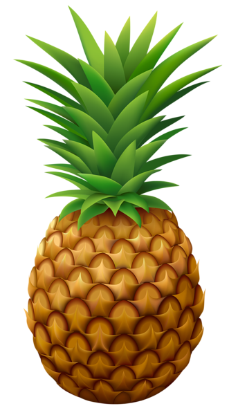 image royalty free library Pineapple png clipart image. Pinapple vector simple