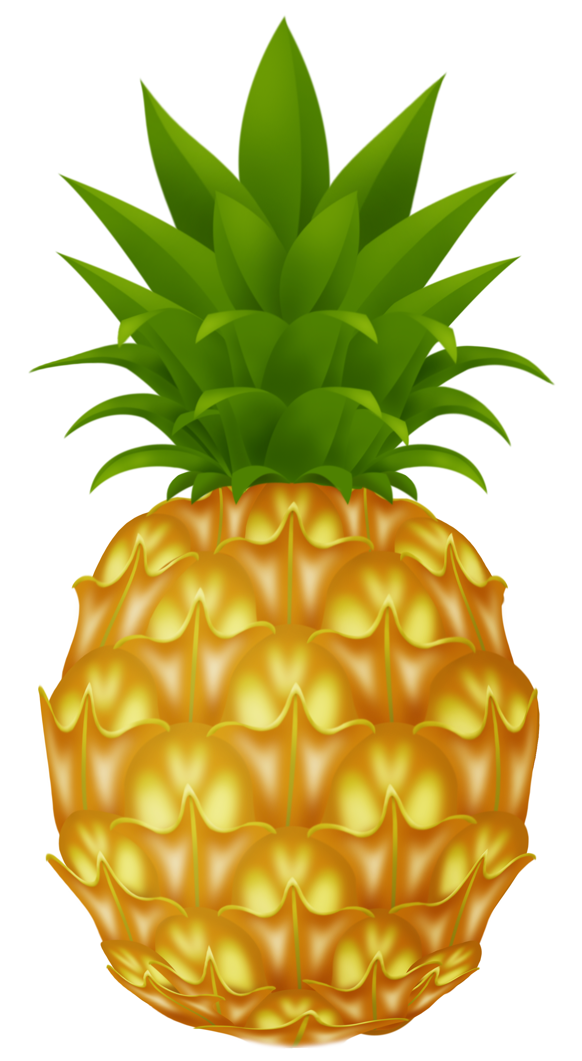 clip art black and white library Pinapple vector. Pineapple png picture clip