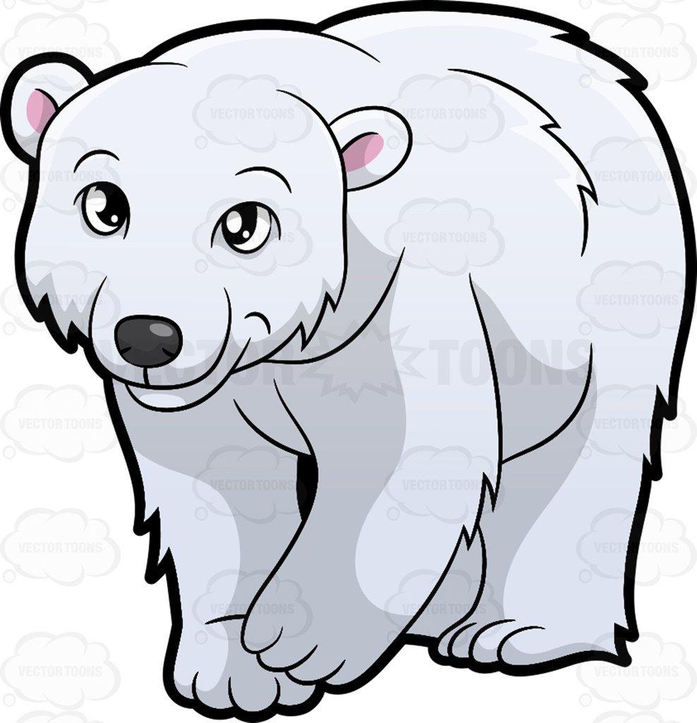 clipart freeuse library Clipart polar bear. A friendly looking cartoon