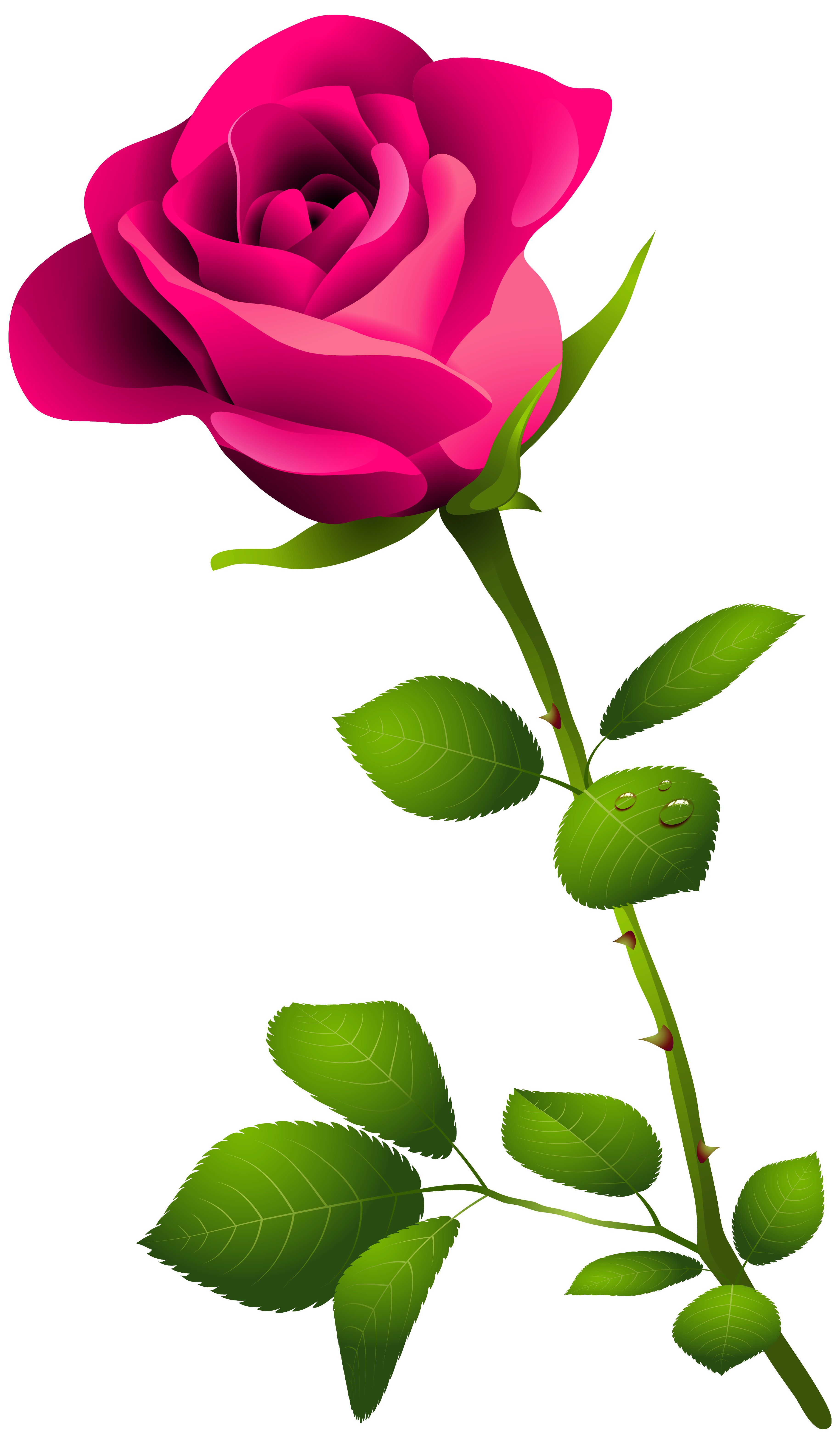 svg royalty free Pink Rose with Stem PNG Clipart Image