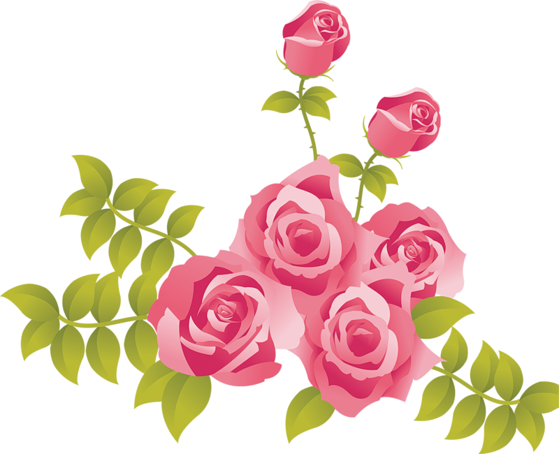 graphic Pink Roses Free Clipart