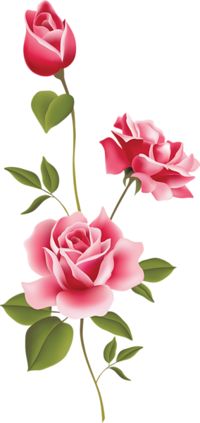 picture freeuse library PINK ROSES CLIP ART