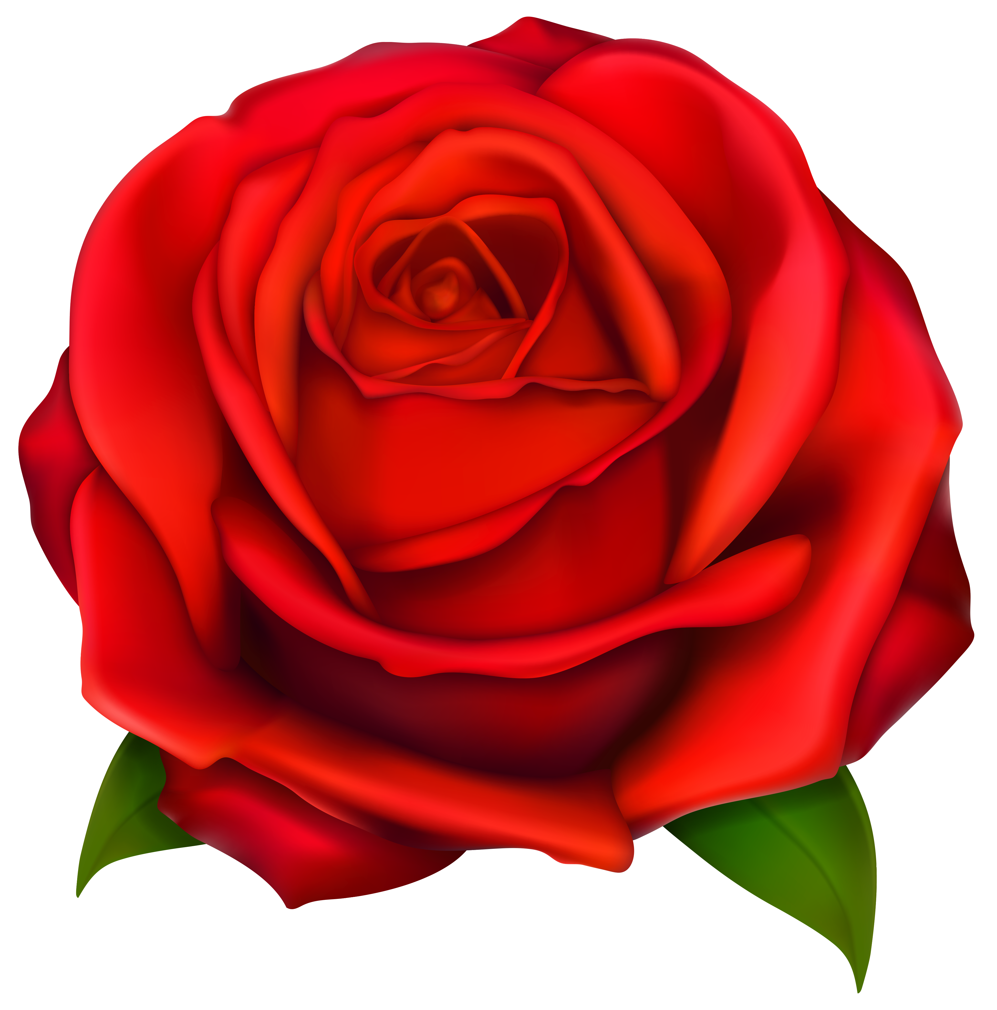 svg freeuse library Rose flower clipart. Image of clip art