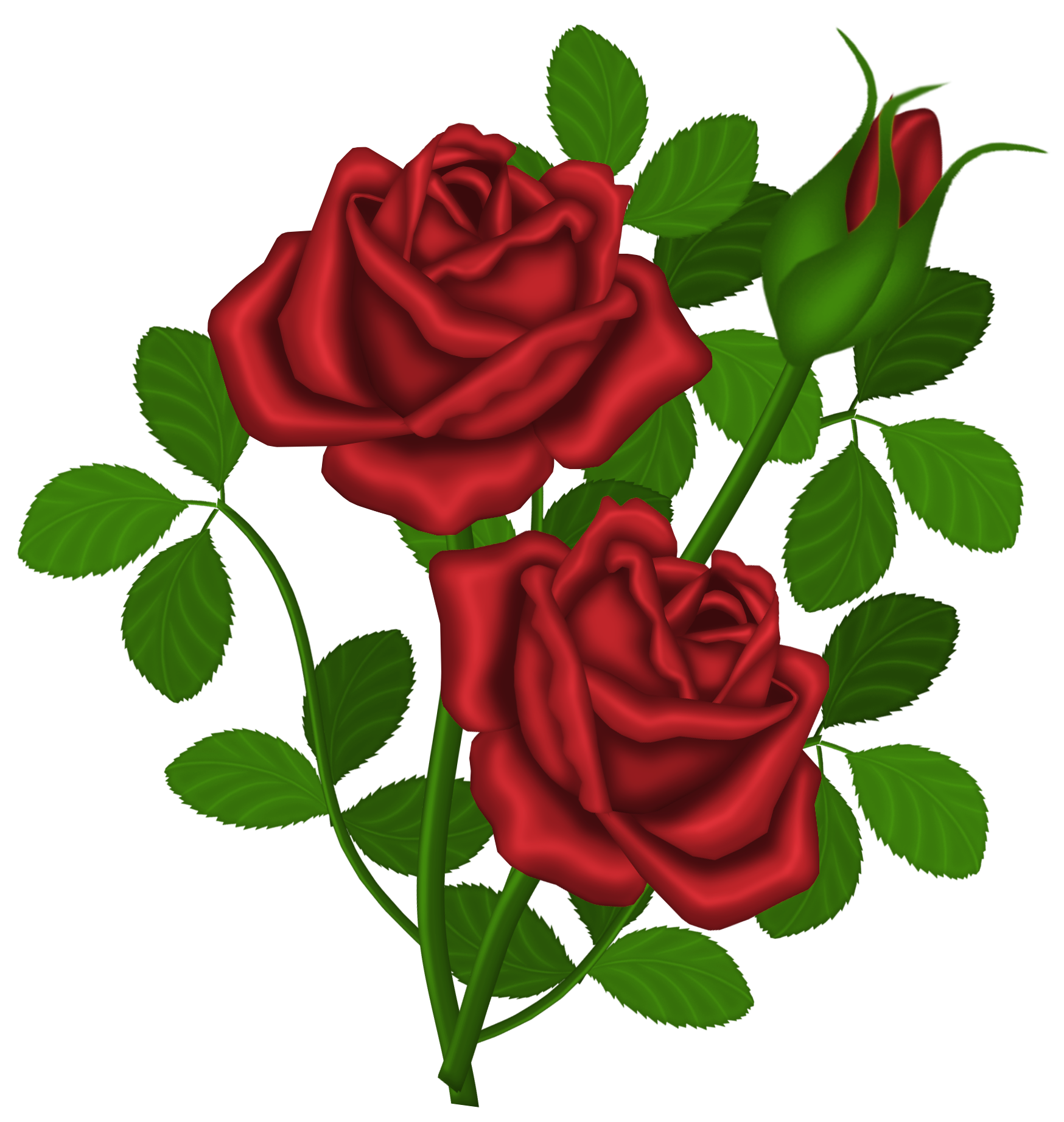 freeuse Roses clipart. Red png picture gallery.