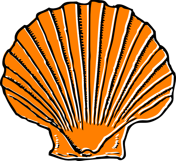 png black and white download Orange Seashell Clip Art at Clker