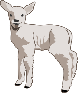 banner royalty free library Lamb clipart line art. Black and white panda.