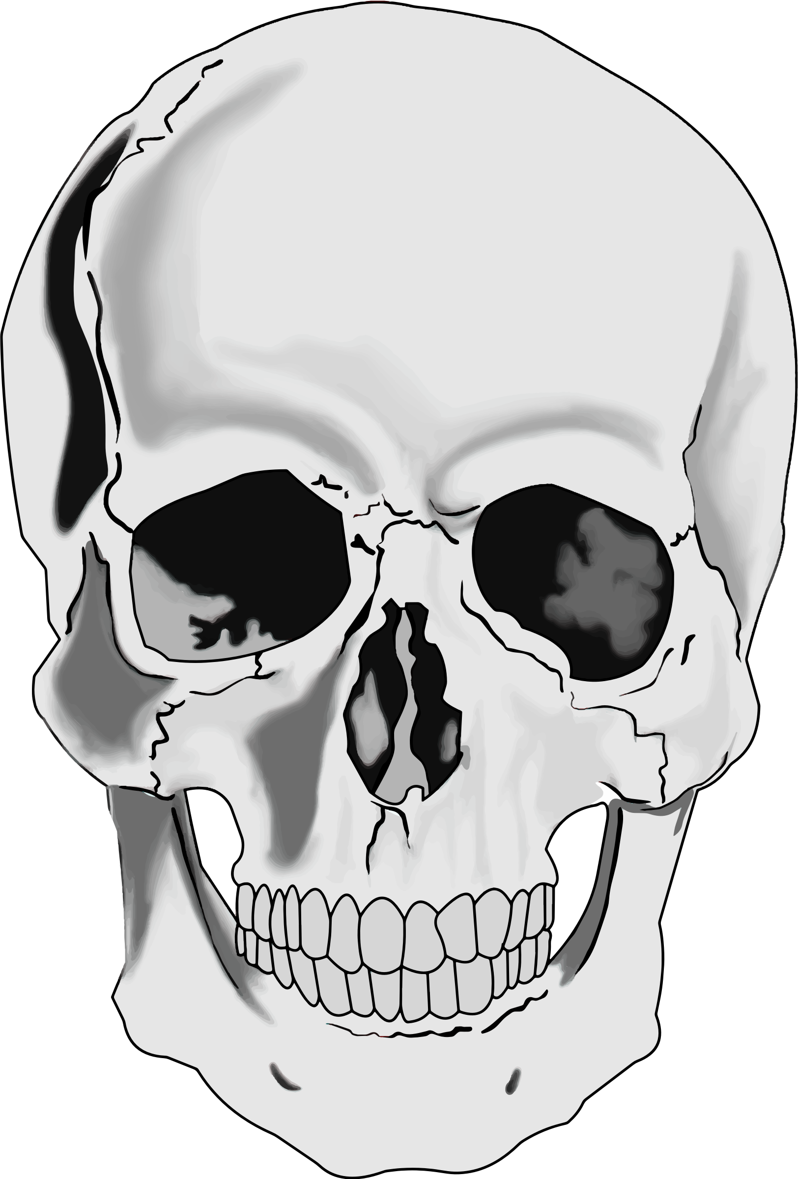 library Skull clipart. Animated free on dumielauxepices.