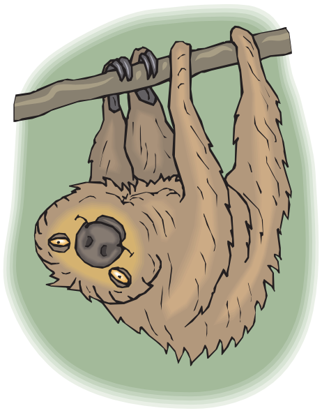 jpg library stock Happy Hanging Sloth Clip Art at Clker