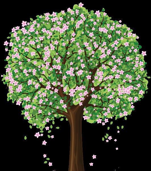 jpg transparent Spring Tree PNG Clipart