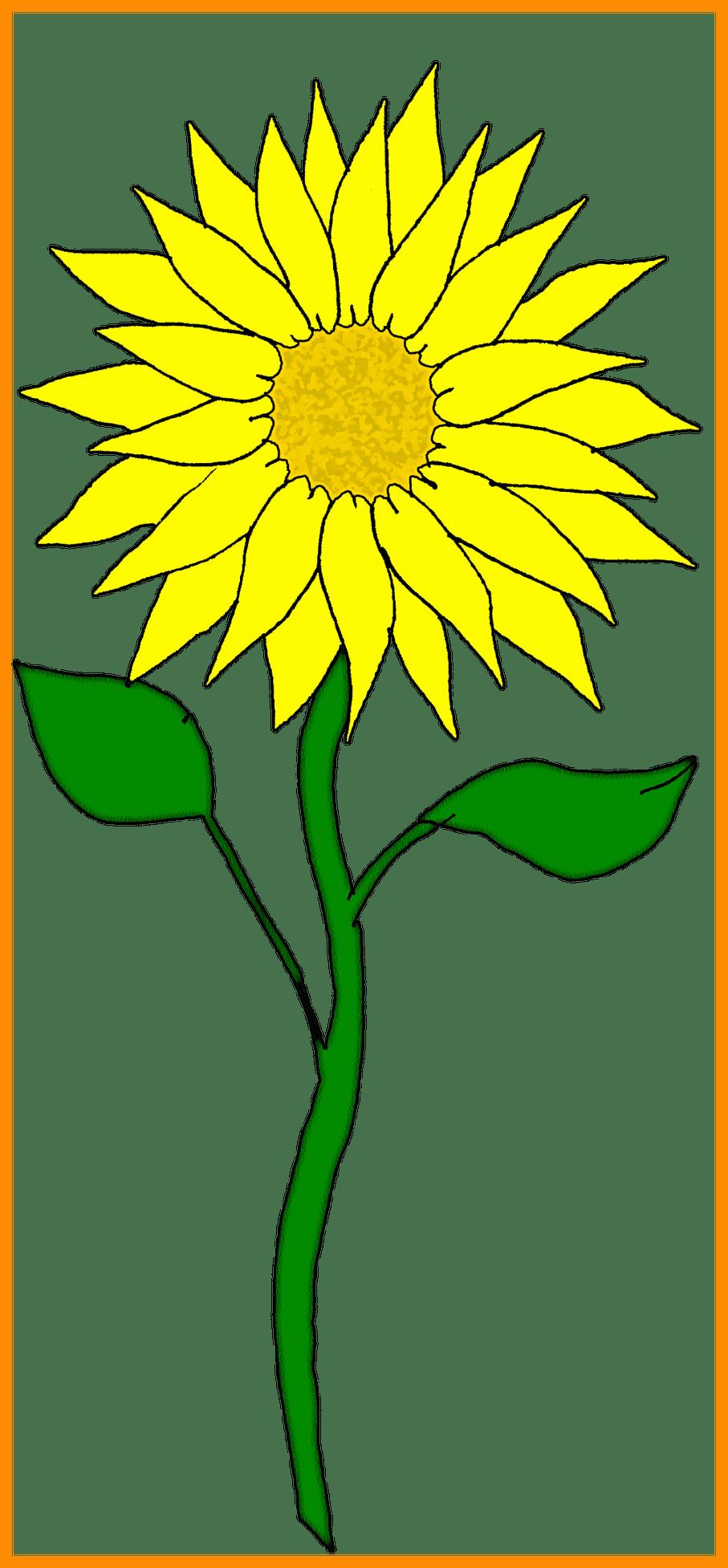 royalty free stock Stunning flower pict for. Clipart sunflower
