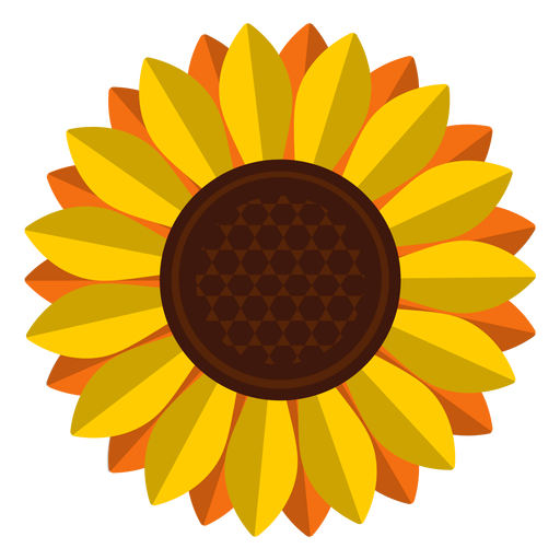 picture black and white Isolated sunflower head clipart