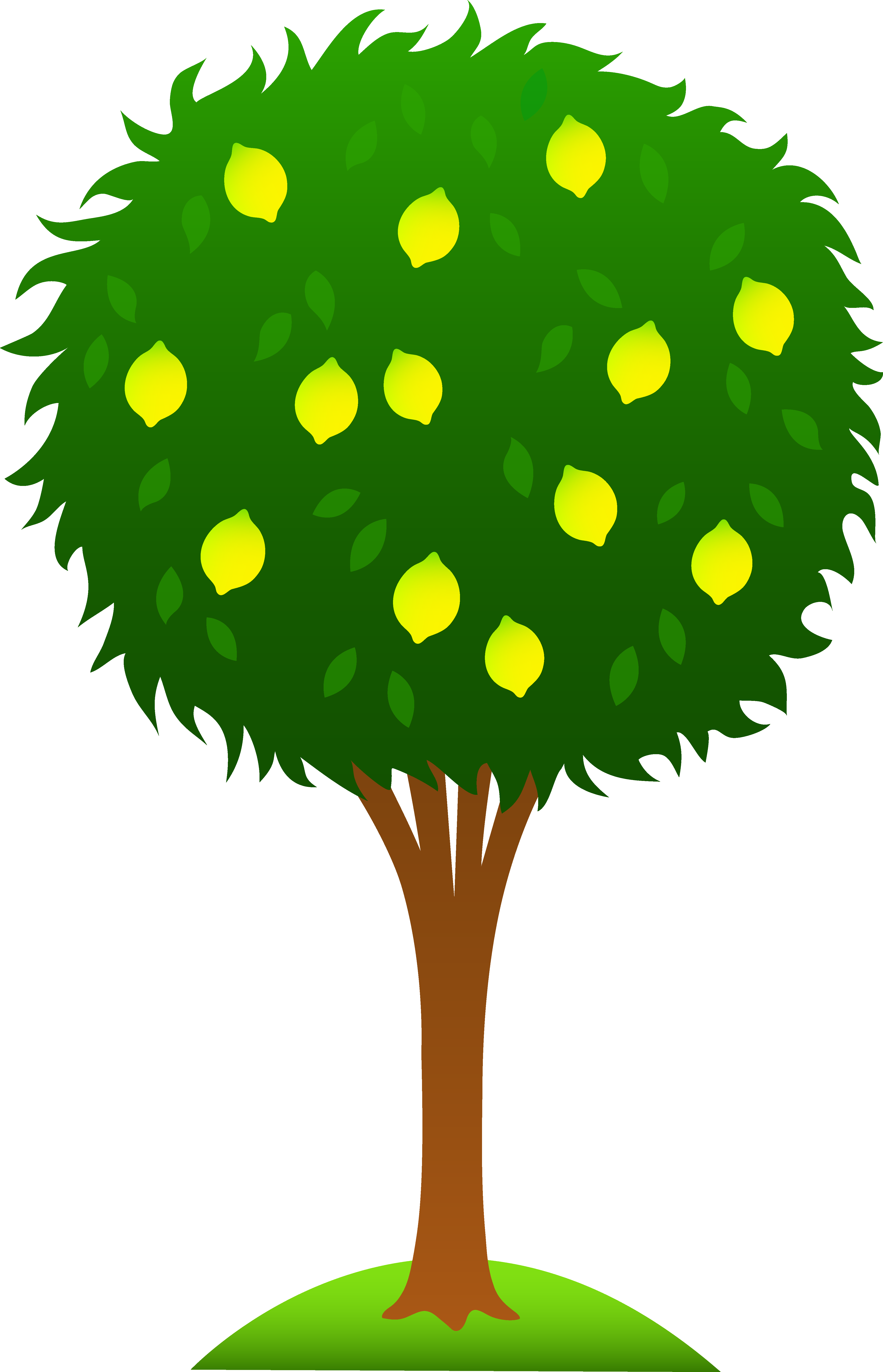 svg freeuse library cartoon lemon tree clipart
