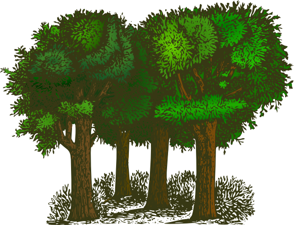 vector stock Trees clipart. Group of