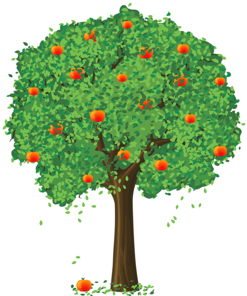 banner free library Broccoli clipart coloring book. Painted apple tree png.