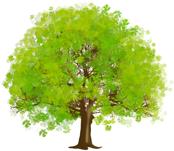 picture freeuse Large Green Tree PNG Clipart