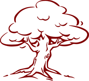 png transparent Trees Clipart oak
