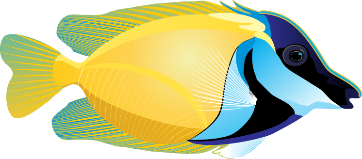 clip art free download Tropical Fish Clipart