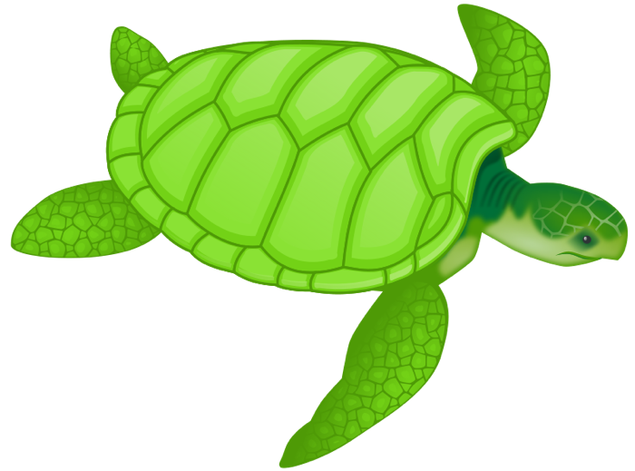 picture transparent library Free turtle and animations. Ocean animal clipart