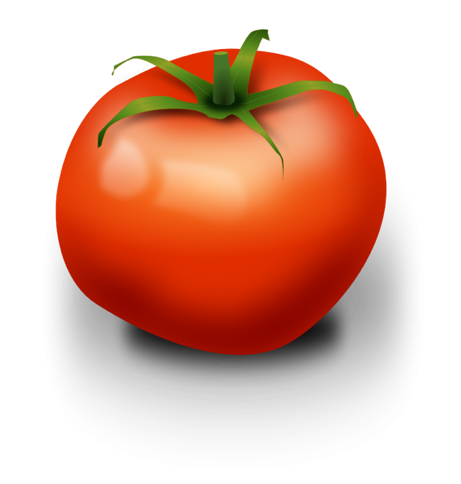 free stock Tomato. Vegetable clipart