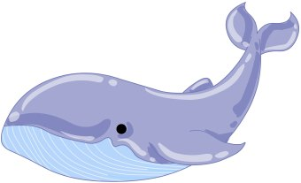 banner freeuse download Clipart whale. Free cliparts download clip