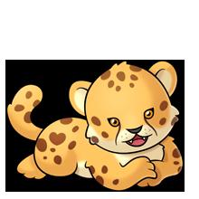 svg black and white stock Cheetah fluff favourites pinterest. Clown clipart pygmy marmoset.