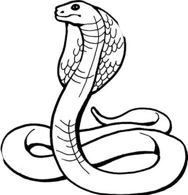 vector royalty free library Ular sticker by hilfigertommy. Cobra clipart black and white