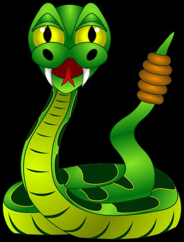transparent library Rattle snake clip art. Reptile clipart swamp bird